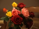 Blumen Eurythmie Festival Wetzikon
